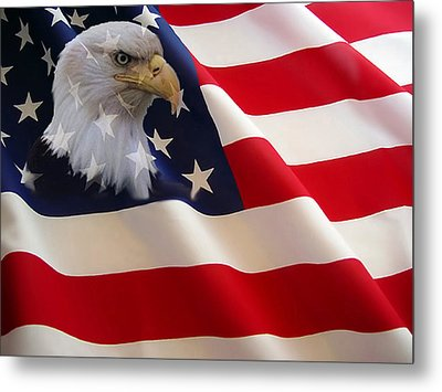 The Eagle Flag Metal Print by Evelyn Patrick