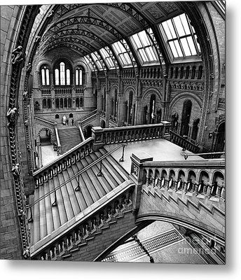 The Escher View Metal Print by Martin Williams