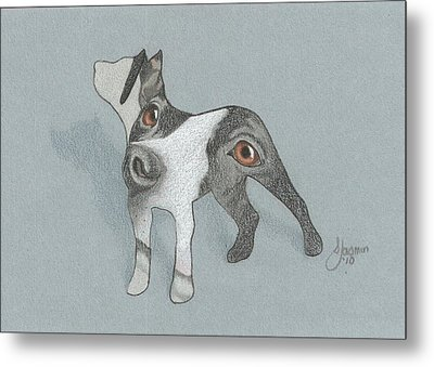 The Eyes Have It Metal Print by Stacey Jasmin