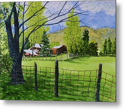 The Grass Is Greener Metal Print by Don Bosley