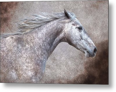 The Gray Metal Print by Ron  McGinnis