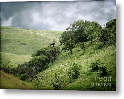 The Green Hills Of Home Metal Print by Ellen Cotton