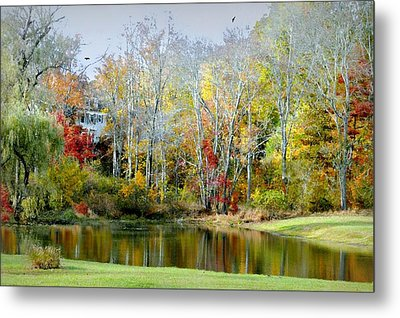 The House Guest Metal Print by Diana Angstadt