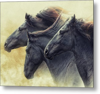 The Immortals Metal Print by Ron McGinnis