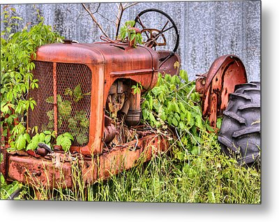 The Ivy League Metal Print by JC Findley