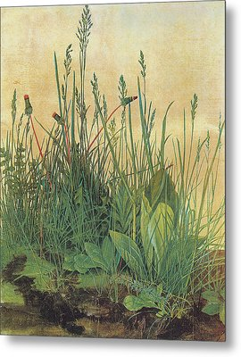 The Large Piece Of Turf Metal Print by Albrecht Durer