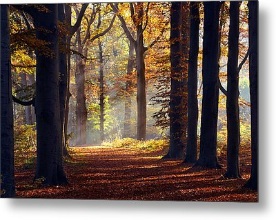 The Light At The End Of The Tunnel Metal Print by Roeselien Raimond
