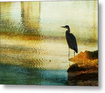 The Lonely Hunter II Metal Print by Amy Tyler
