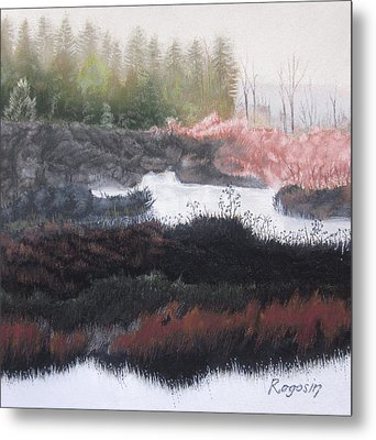 The Marsh Of Changing Color Metal Print by Harvey Rogosin