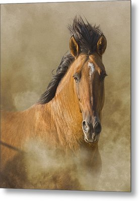 The Mustang Metal Print by Ron  McGinnis