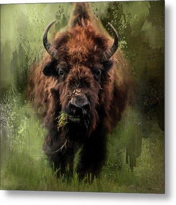 The Nibbler Bison Art By Jai Johnson Metal Print by Jai Johnson