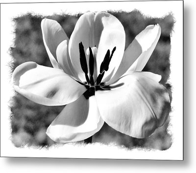 The Notecard Metal Print by Karen M Scovill