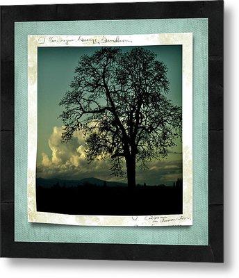 The Old Oak Metal Print by Bonnie Bruno