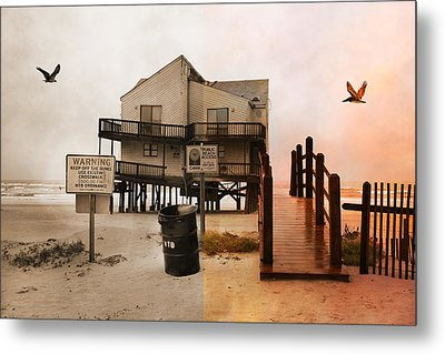 The Osprey And The Pelican Metal Print by Betsy Knapp