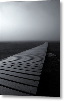The Path Metal Print by Mike  Dawson