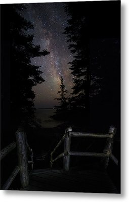 The Path Of The Hunter Metal Print by Brent L Ander