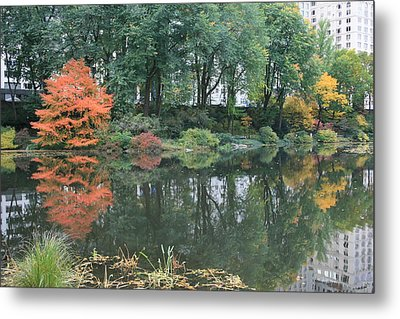 The Pond In Central Park In Fall Metal Print by Christopher Kirby