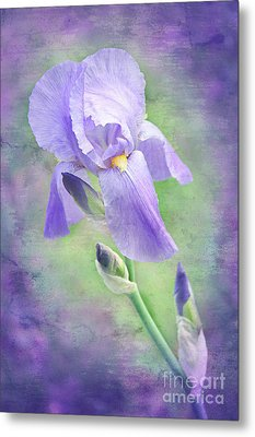The Purple Iris Metal Print by Andee Design