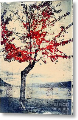 The Red Tree At Okanagan Lake Metal Print by Tara Turner