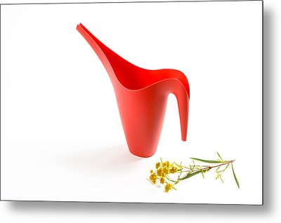 The Red Watering Can With Flowers Metal Print by Lynn Berreitter