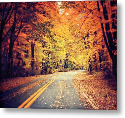 The Road Less Traveled Metal Print by Lisa Russo