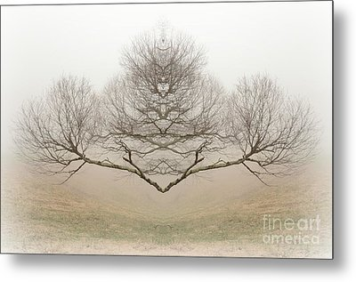 The Rorschach Tree Metal Print by Jim Cook