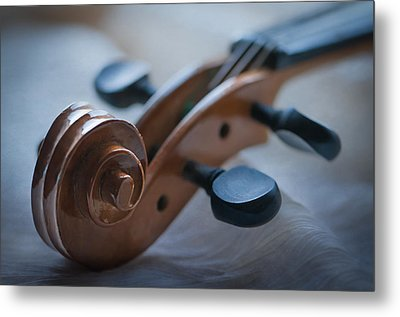 The Scroll  Metal Print by Maggie Terlecki