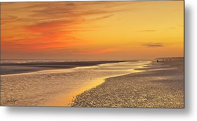 The Shallows Metal Print by Phill Doherty