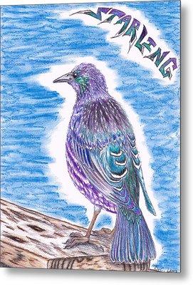 The Starling Metal Print by Bryant Lamb