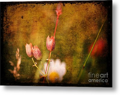 The Three Of Us Metal Print by Silvia Ganora