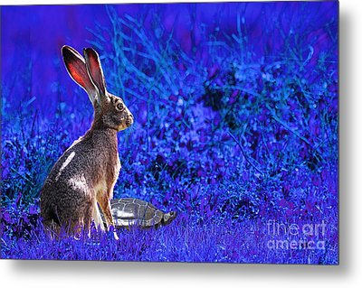 The Tortoise And The Hare . Blue Metal Print by Wingsdomain Art and Photography