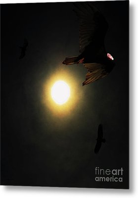 The Vultures Have Gathered In My Dreams . Portrait Cut Metal Print by Wingsdomain Art and Photography