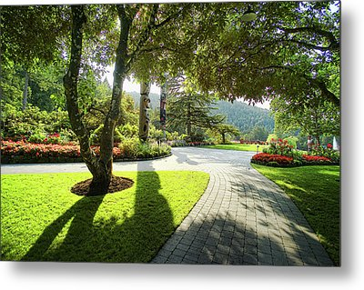 The Walkway Metal Print by Lawrence Christopher