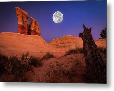 The Watcher Metal Print by Edgars Erglis