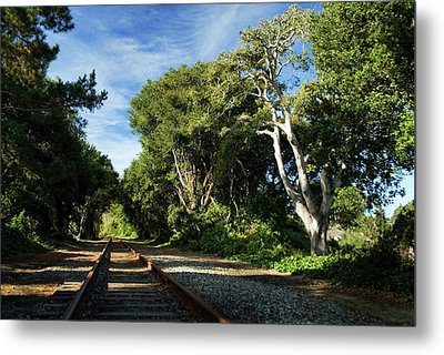 The Way Metal Print by Wayne Stadler