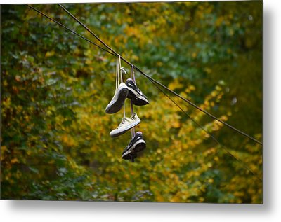 The Wire Metal Print by Bill Cannon