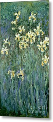 The Yellow Irises Metal Print by Claude Monet