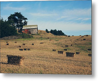 There All Along Metal Print by Laurie Search