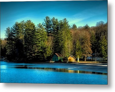 Thin Ice Forming At The Pond Metal Print by David Patterson