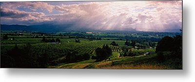 This Is Near The Hood River. It Metal Print by Panoramic Images