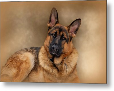 Those Eyes Metal Print by Sandy Keeton