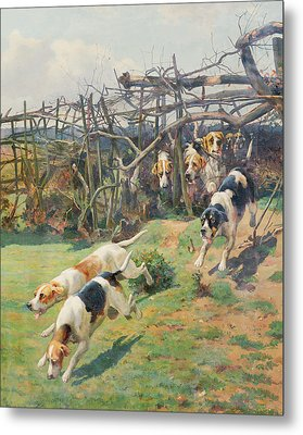 Through The Fence Metal Print by Arthur Charles Dodd