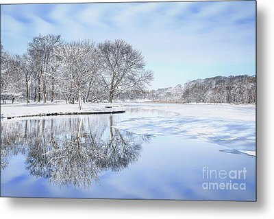 The March Of Winter Metal Print by Evelina Kremsdorf