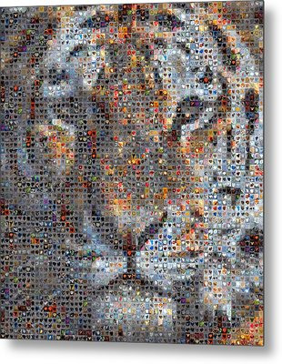 Tiger Metal Print by Boy Sees Hearts