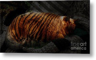 Tiger Dreams Metal Print by Kathi Shotwell