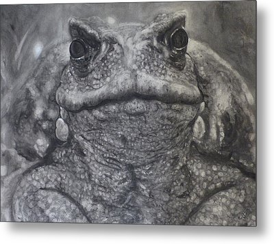 Toad Metal Print by Adrienne Martino
