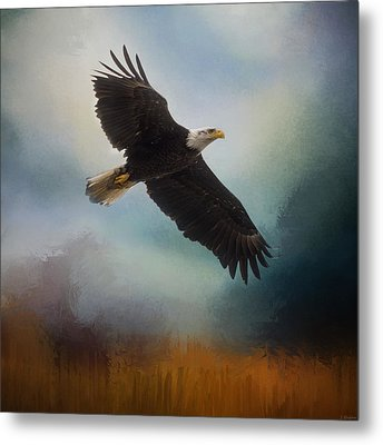 Tomorrow - Eagle Art Metal Print by Jordan Blackstone
