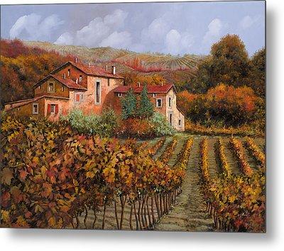 tra le vigne a Montalcino Metal Print by Guido Borelli