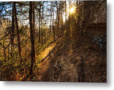 Trail Of Happiness - Blowing Springs Trail Arkansas Metal Print by Lourry Legarde