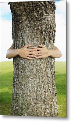 Tree Hugger 1 Metal Print by Brandon Tabiolo - Printscapes
